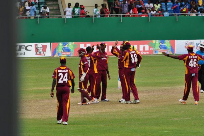 Cricket at SVAGA